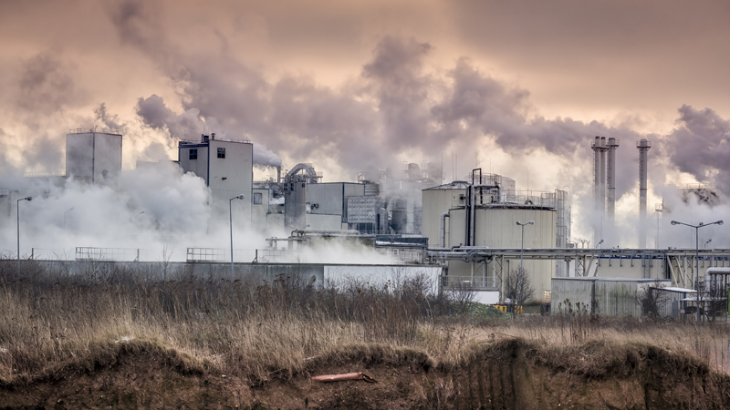 Clean air strategy is a 'missed opportunity' Image