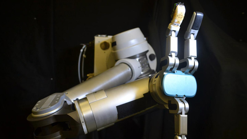 Flexible sensor 'skin' could help robots and prosthetics to perform everyday tasks Image