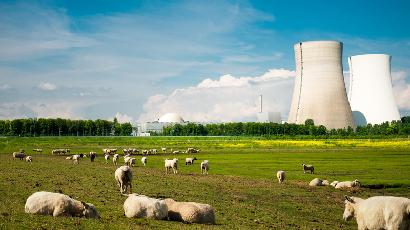 Government 'must find new nuclear sites and speed up reactor approval' Image
